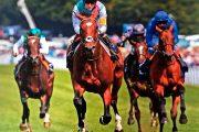 apostar a los caballos con bitcoin