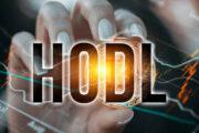 Cómo hacer HODL de Bitcoin y otras criptomonedas